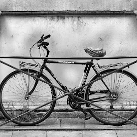 Reserved parking place by Alberto Schiavo - Transportation Bicycles (  )