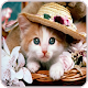 Cute kittens Images Download for PC Windows 10/8/7