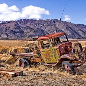 Old Hay Truck by Patti Reddoch - Transportation Automobiles (  )