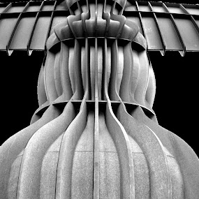 by Alyson Jackson - Buildings & Architecture Architectural Detail ( angel, north, gormley )