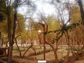 Photo: نمايي از باغ دولت آباد يزد