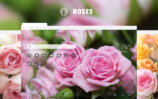 Roses Love Flowers Hd Wallpaper Theme