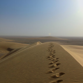 A Top A Dune by Anthony Schwab - Landscapes Deserts ( barren, sand dune, qatar, travel, alone, photography )