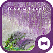 Wallpaper Wisteria Tunnel