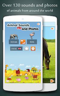 Animal Sounds screenshot 00