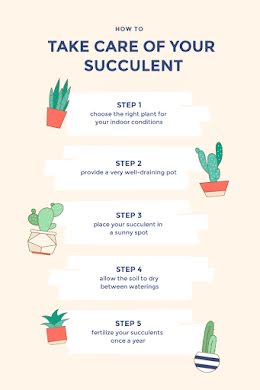 Care of Your Succulent - Pinterest Pin item