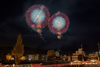 Photo: 昇曲導 四重芯変化菊 (茨城県 野村 陽一)