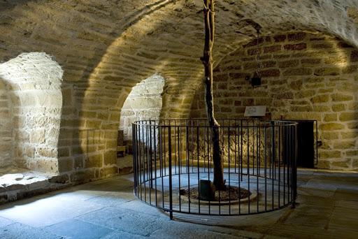 Árbol cercado al interior de castillo