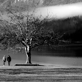 Together by Donat Piber - Black & White Landscapes ( tree, frog, lake, people )