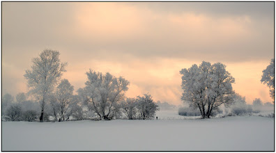 Photo: 22. december 2010 - Frost