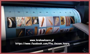 Photo: poster A1 papier pełne FOTO 290g plakat wielkoformatowy rozmiar XXL