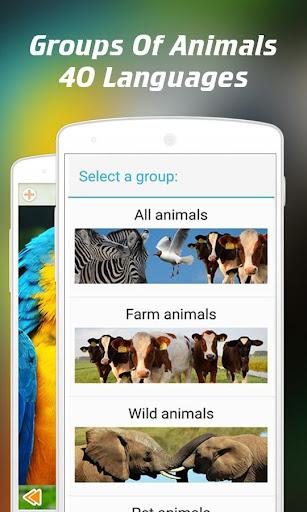Animal Sounds for Kids 2.62.6 screenshots 2