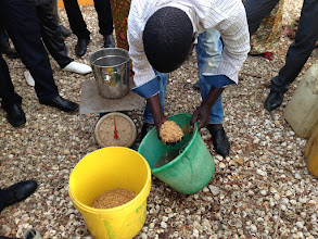 Photo: SRI Training in Toubacouta.  [Photo by Devon Jenkins, Senegal, 2015]