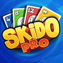 Skido-Pro icon