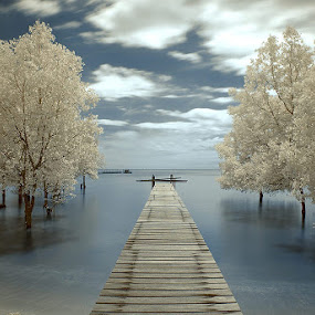 Pier by Firman Hananda Boedihardjo - Landscapes Waterscapes