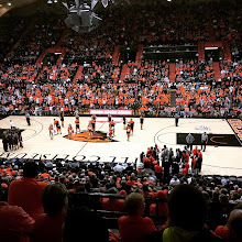 Photo: Crowd of over 9000 for OSU Beaver Basketball!