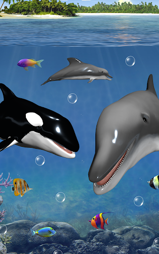 Dolphins and orcas wallpaper apk 11431 download only apk file dolphins and orcas wallpaper altavistaventures Gallery