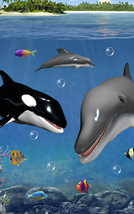 Dolphins and orcas wallpaper screenshot 12