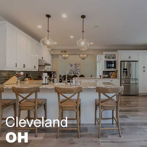Cleveland Ohio Plum Tree Realty