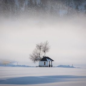 Fog in the background by Matic Cankar - Landscapes Weather ( shrine, cold, tree, fog, no person, snow, trees, landscape, dusk,  )