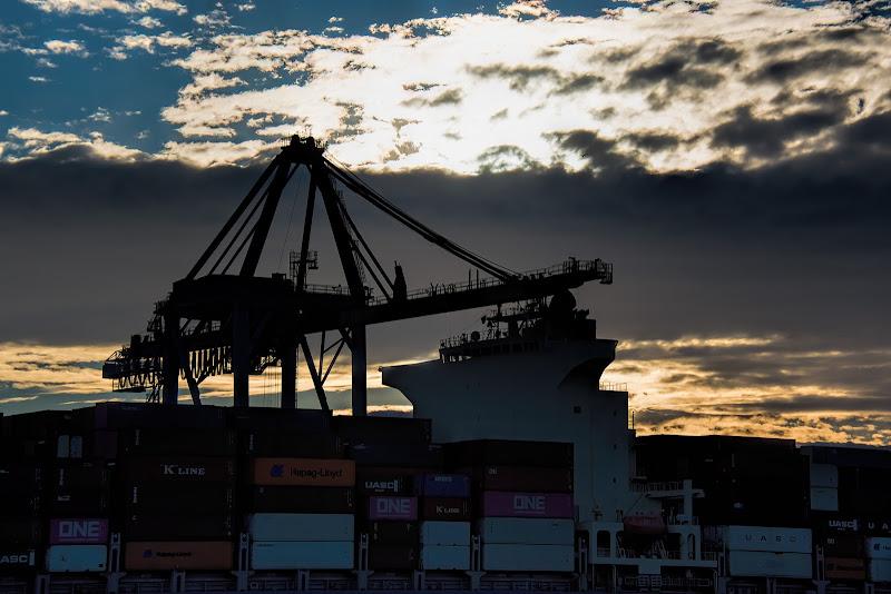Industria navale a Zena di dady2