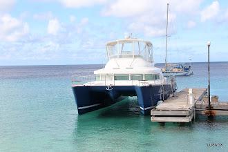 Photo: Catamaran amarrado