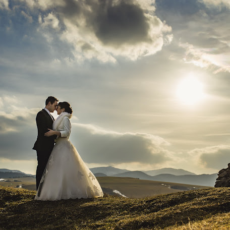 Wedding photographer Martin Krystynek (martinkrystynek). Photo of 07.03.2017