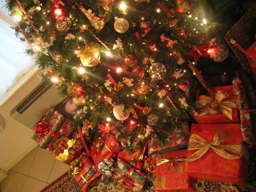 Sotto l'albero.. di Jeji