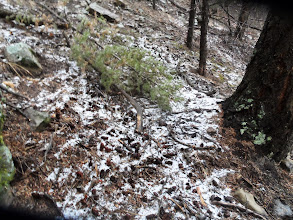 Photo: Hail remnants looking more like snow.