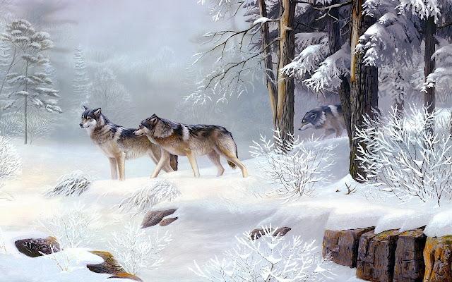 Wolves Tab