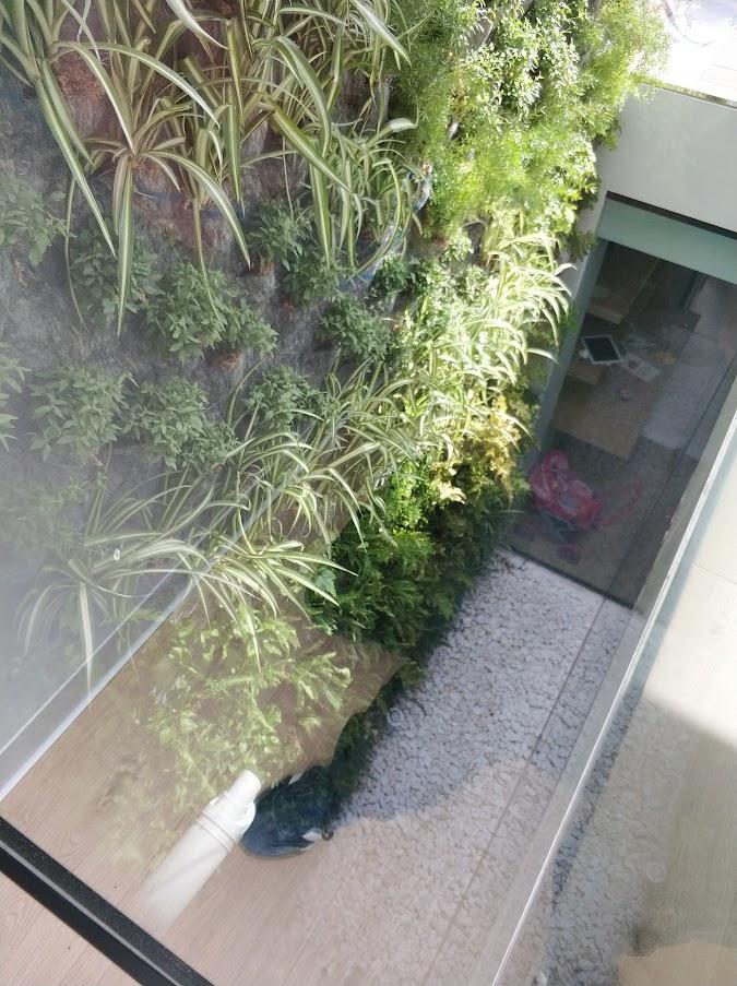 Jardín vertical dentro del interior del hogar