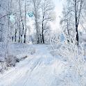 Snowfall HD Live Wallpaper Pro icon