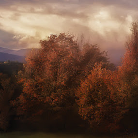 Autumn by Anne Marie Hickey - Landscapes Mountains & Hills ( pwcautumn )