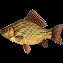 Рыбалка. Все рыбалке. icon