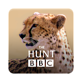 The Hunt - BBC Earth TV series