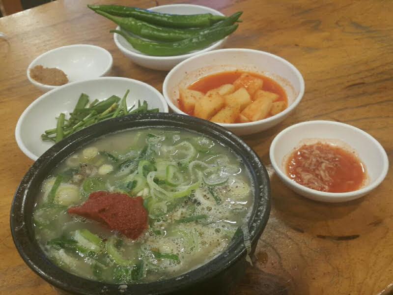 박주용의 맛집 탐방