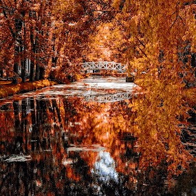 Domaine Maizeret-Quebec City by Clermont Poliquin - City,  Street & Park  City Parks ( quebec, park, canada, autumn, quebec city )