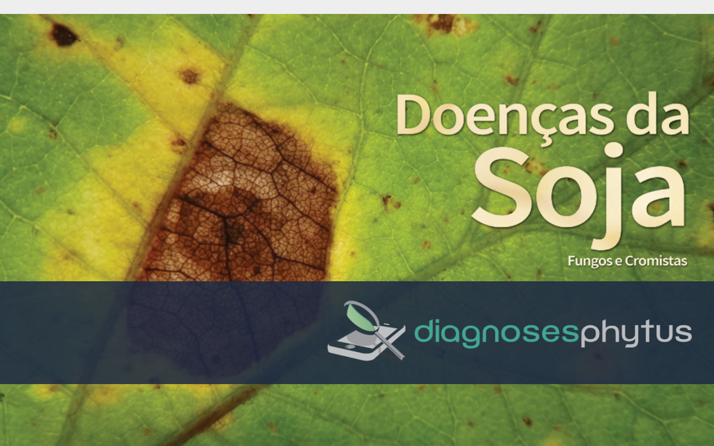 Diagnoses - Doenças da Soja- screenshot