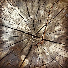 The cracks keep it interesting... by Erin Watson - Instagram & Mobile Instagram