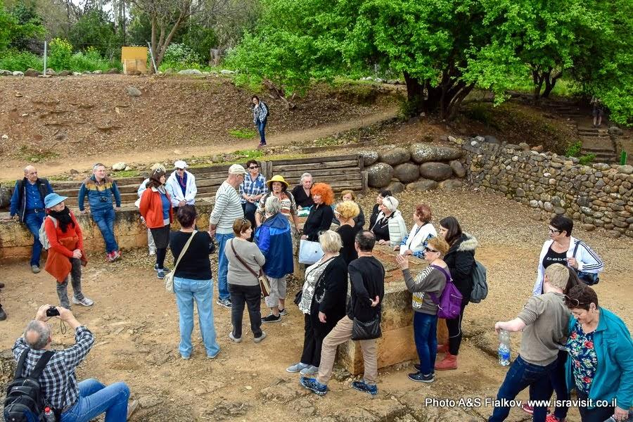 Экскурсия в древнем городе Дан Израильского царства. Гид  в Израиле Светлана Фиалкова.