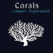 Corals, by Reef Life