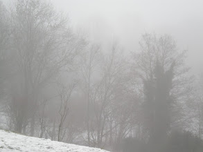Photo: #fog   It's slowly warming up outside - and the world vanishes in FOG  Have a great #Monday everyone.