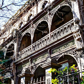 victorian splendour by Ray Heath - Buildings & Architecture Homes ( terrace houses, melbourne, australia, victorian, victoria,  )