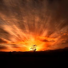 Light and Dark by David Morris - Landscapes Sunsets & Sunrises ( landscapes )