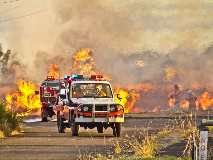 Feeling the heat by Bronwyn Holmes - News & Events Weather & Storms