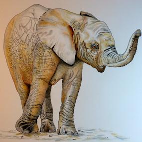 Peanuts by Dave Feldkamp - Drawing All Drawing ( elephants, baby elephant, elephant,  )