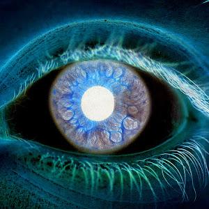 sachas eye invert_edited-1.jpg