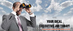 Your Executive/Director CV Reviewed by A Top Career Specialist/Author – Free