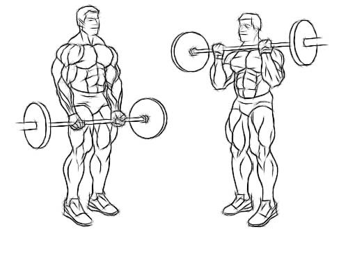 wide-grip-standing-barbell-curl.jpg