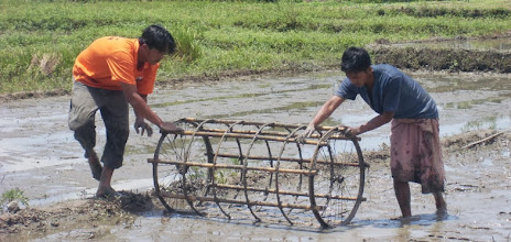 Photo: Roller marker with bicycle wheels in Manipur, India [Photo courtesy of Mr. Tomba, 2013]